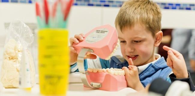 Kariesschutz beim Zahnarzt
